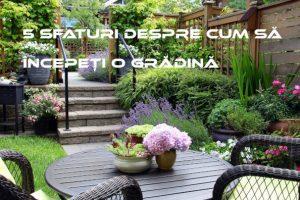 5 sfaturi despre cum să începeți o grădină - idei simple